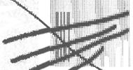 汎美便り vol.39